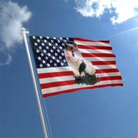 USA Wolf And Eagle Flag