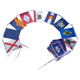 USA States Flag Bunting