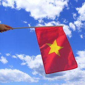 Vietnam Hand Waving Flag