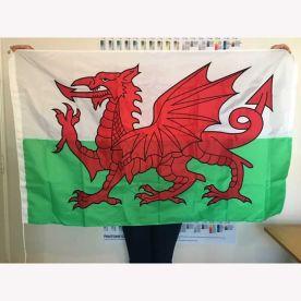 Sewn Welsh Dragon flag