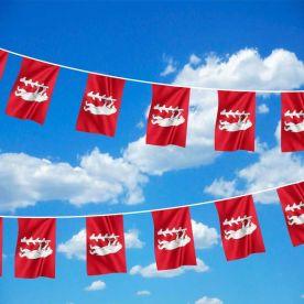 Warwickshire Flag Bunting