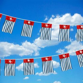 West Papua Bunting