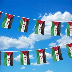 Western Sahara Bunting