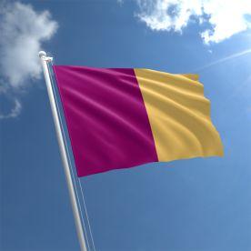 Wexford flag