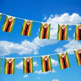 Zimbabwe Bunting